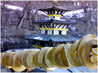 Muktinath Darshan